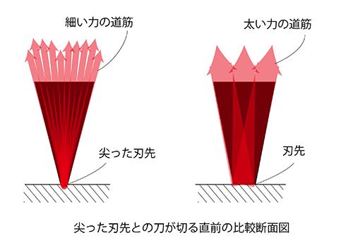 torus line of force