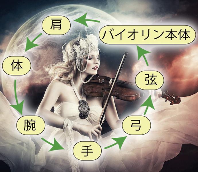 トーラスとバイオリン